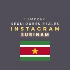 comprar seguidores instagram surinam