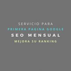 servicio seo mensual